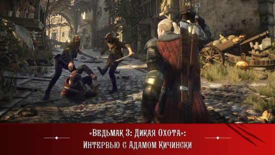 TheWitcher312.png
