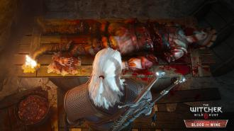 The_Witcher_3_Wild_Hunt_Blood_and_Wine_Need_a_hand_RGB_EN.jpg