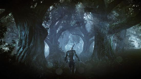 The_Witcher_3_Wild_Hunt_Geralt_alone_in_a_deep_and_dark_forest.jpg