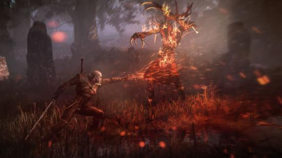 The_Witcher_3_Wild_Hunt_Geralt_uses_Igni_to_torch_leshen.jpg